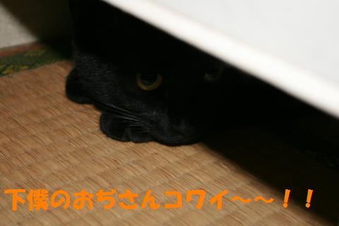 024_convert_20100504213626.jpg