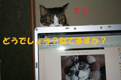 024_convert_20100730162329.jpg