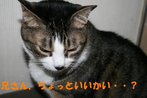 024_convert_20100831224033.jpg