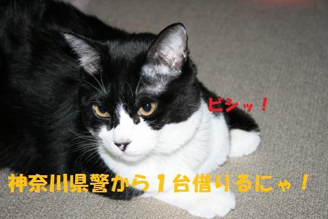 024_convert_20100928231132.jpg