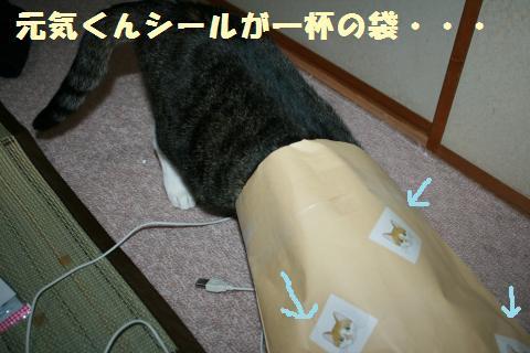 024_convert_20110811222630.jpg