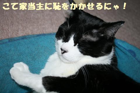 024_convert_20111013174337.jpg