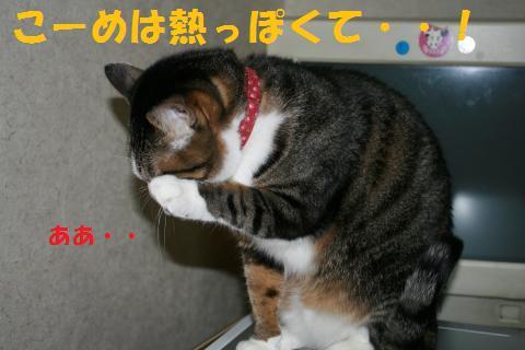 025_convert_20100218234104.jpg