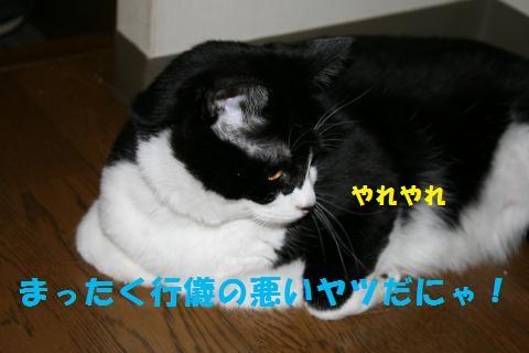 025_convert_20100902230042.jpg
