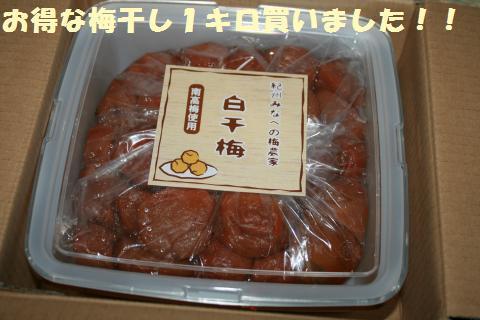 025_convert_20110801223423.jpg