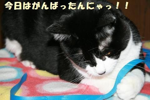 025_convert_20111020221714.jpg