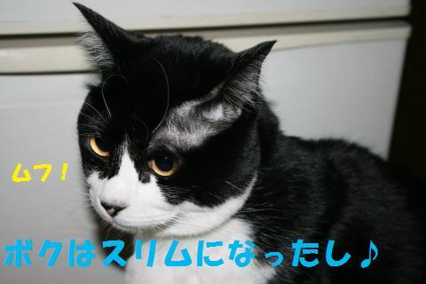 026_convert_20100207225013.jpg