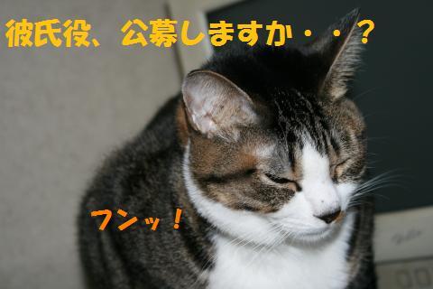 026_convert_20100326231024.jpg