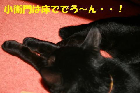 026_convert_20100414002347.jpg