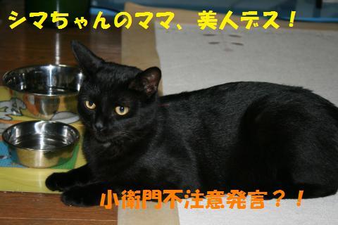 026_convert_20100728215321.jpg