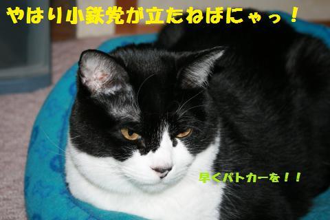 026_convert_20110411233151.jpg