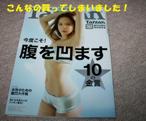 026_convert_20110421191825.jpg