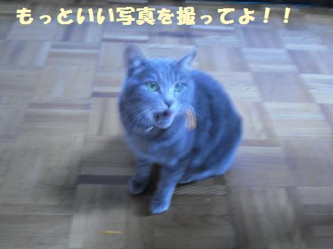 026_convert_20120131231153.jpg