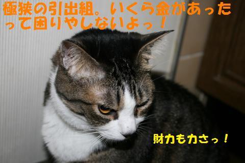 027_convert_20100831224308.jpg