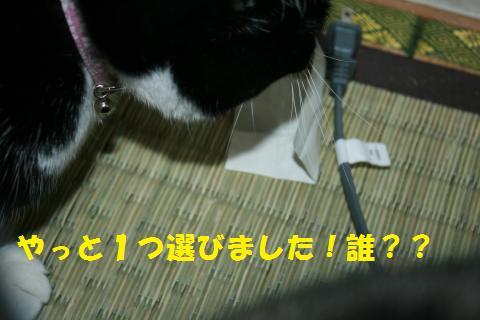 027_convert_20101110192805.jpg