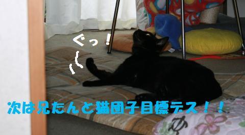 027_convert_20110804224734.jpg