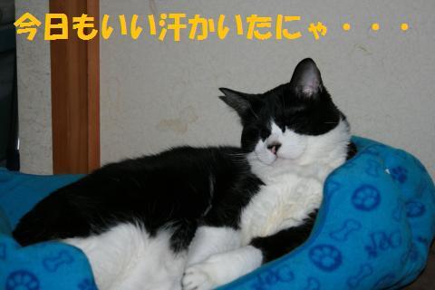 028_convert_20100617235843.jpg