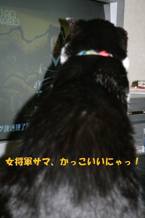 028_convert_20100914223138.jpg