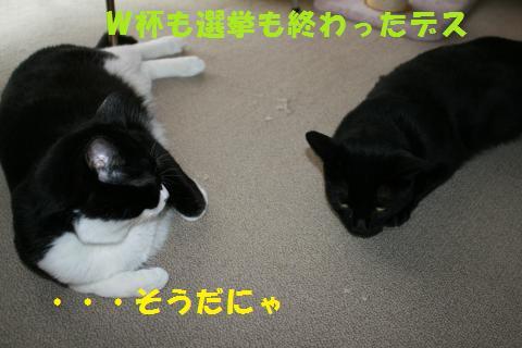 029_convert_20100713001800.jpg