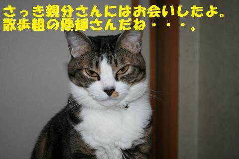 029_convert_20101124194558.jpg