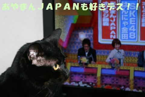 029_convert_20111002172445.jpg