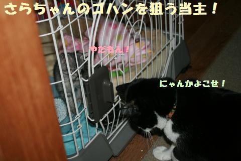 029_convert_20111024185619.jpg
