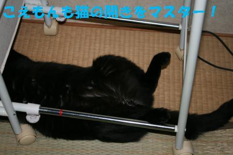030_convert_20100627224122.jpg