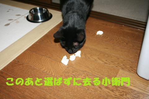 030_convert_20101130222039.jpg
