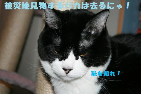 030_convert_20110407182640.jpg