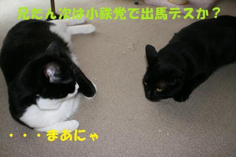 031_convert_20100713001941.jpg