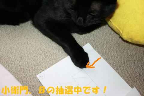 031_convert_20100808204929.jpg