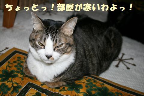 031_convert_20120124220053.jpg