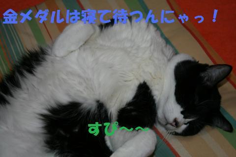 032_convert_20100225201417.jpg