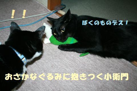 032_convert_20110815224609.jpg