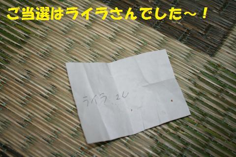 033_convert_20101110192937.jpg