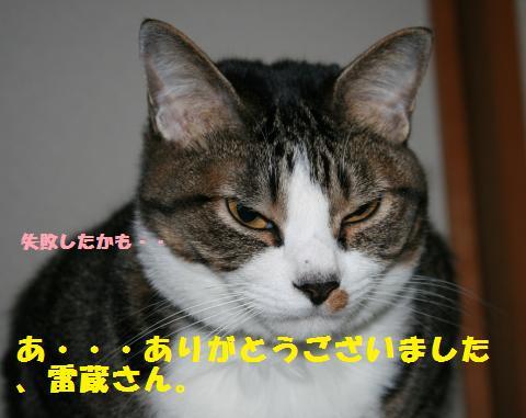033_convert_20110417210630.jpg