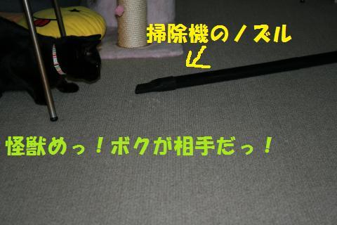 034_convert_20100129223019.jpg