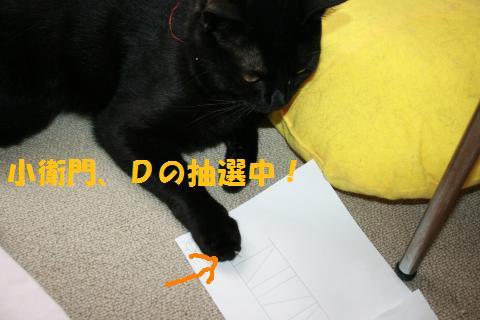 034_convert_20100808205112.jpg