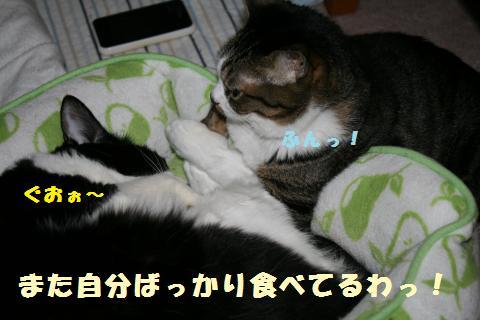 034_convert_20110612223518.jpg