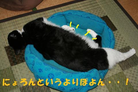 035_convert_20100818205420.jpg