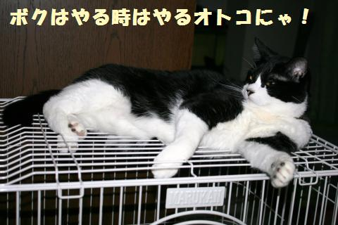 035_convert_20120104215057.jpg