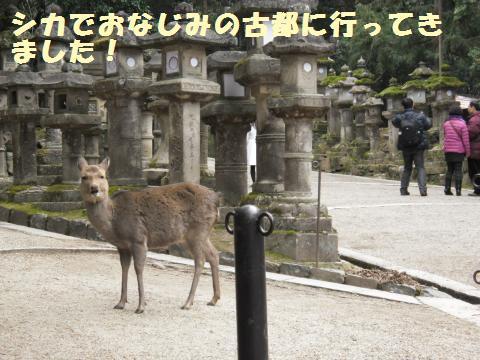 035_convert_20120129225121.jpg