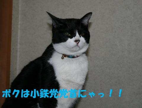 036_convert_20100704181034.jpg