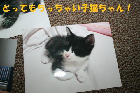 038_convert_20100920212620.jpg