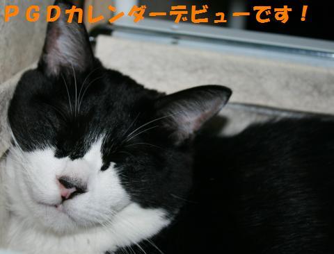 038_convert_20100925211531.jpg