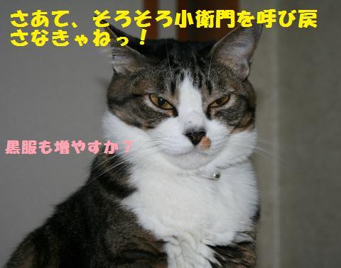 040_convert_20101124195043.jpg