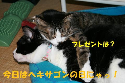 042_convert_20100429000721.jpg
