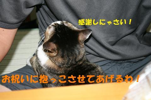 043_convert_20100905212734.jpg