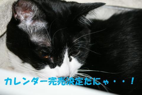 043_convert_20100925211702.jpg