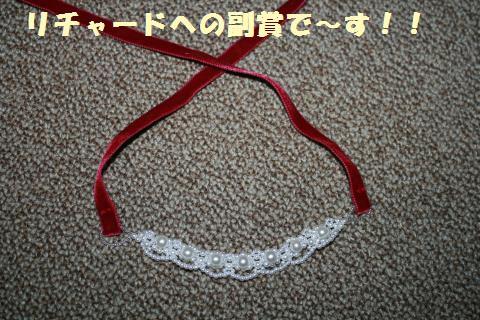 043_convert_20110620232652.jpg